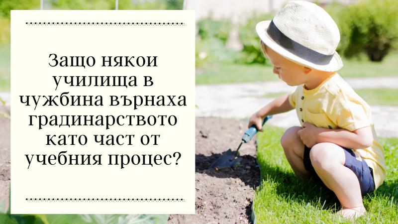 Защо някои училища в чужбина върнаха градинарството като част от учебния процес?